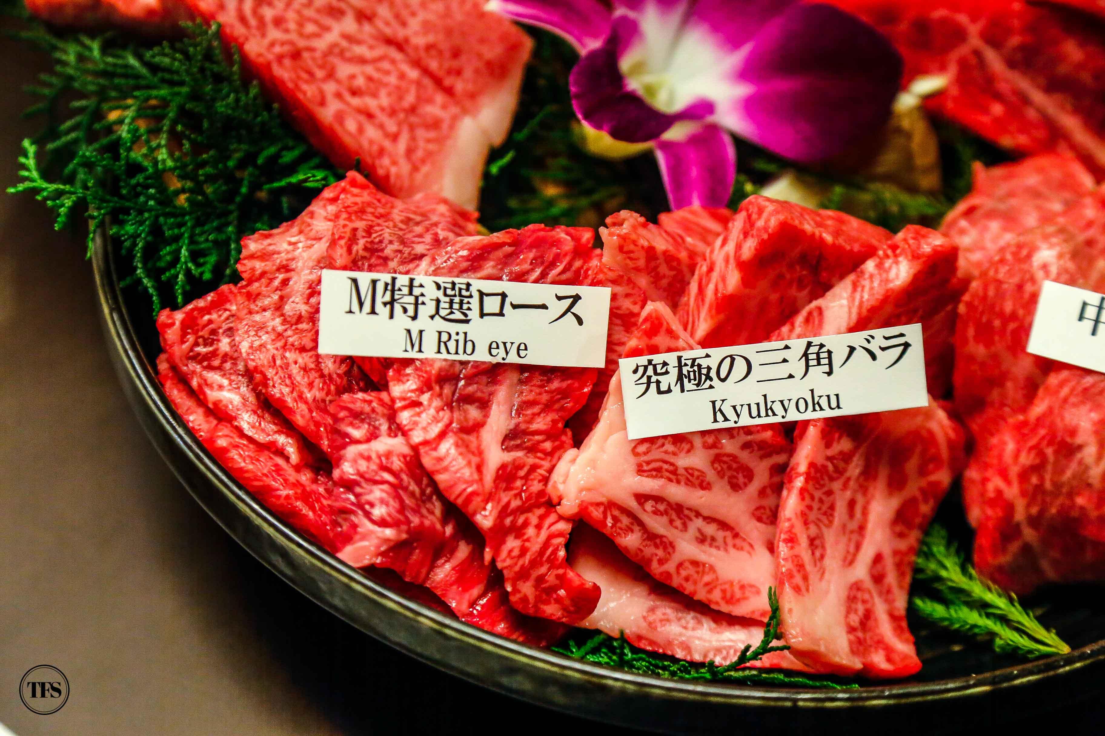 Matsusakagyu Yakiniku M matsusaka beef