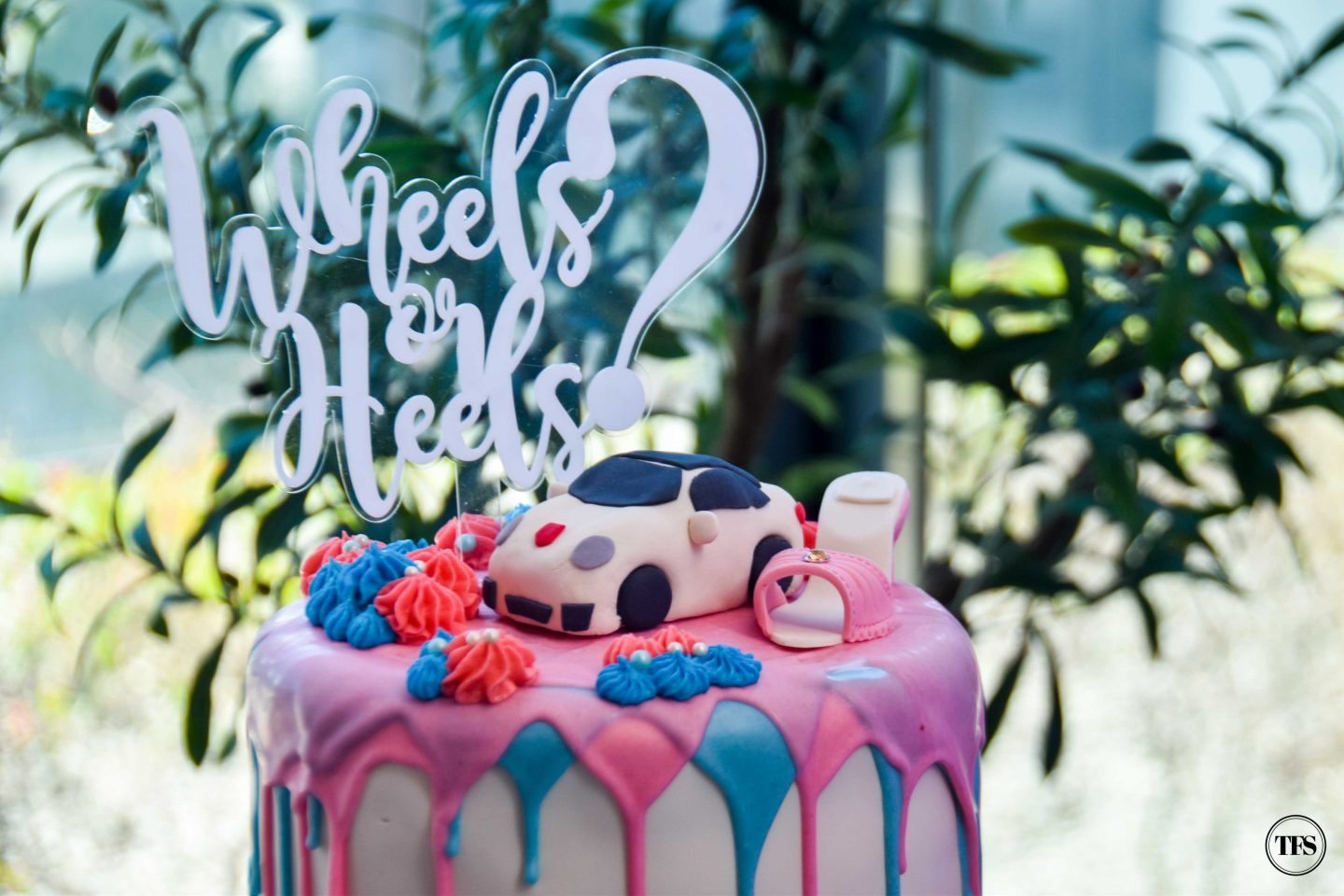 Wheels Or Heels Our Baby Gender Reveal The Food Scout